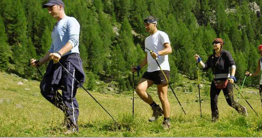 Healthy like the Nordic Walking