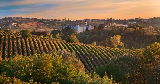 Monferrato Express, get on the bus!
