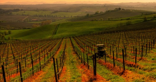 Cycle tourism: Tuscany is investing