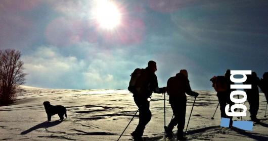 Enchanting sceneries on Mount Tavola