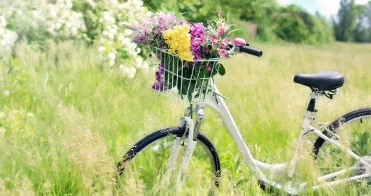Bicycle: a Nobel Peace Prize?