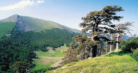 Pollino Park, the best for active holidays