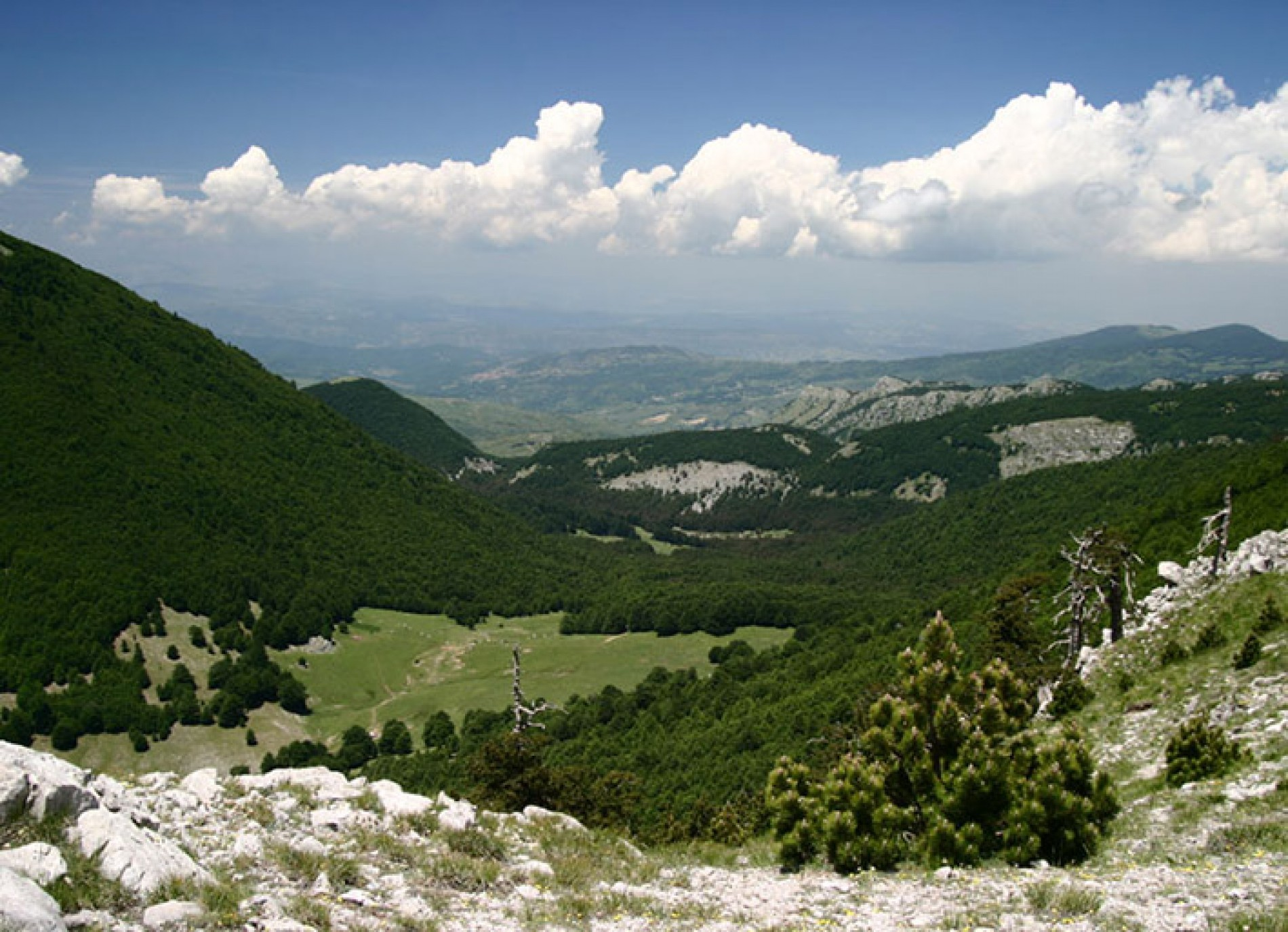 SPENDING OUTDOOR TIME IN THE POLLINO PARK