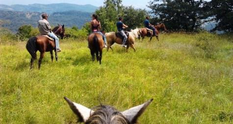Terre di Siena, la magia a cavallo