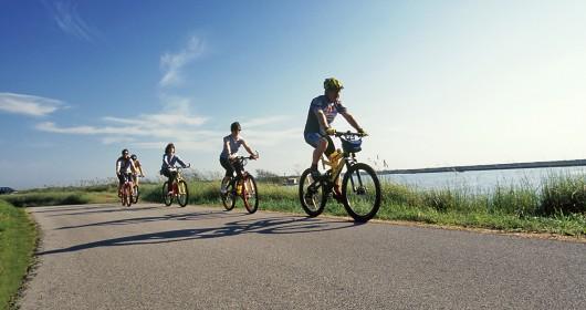In bicicletta nel grande Delta