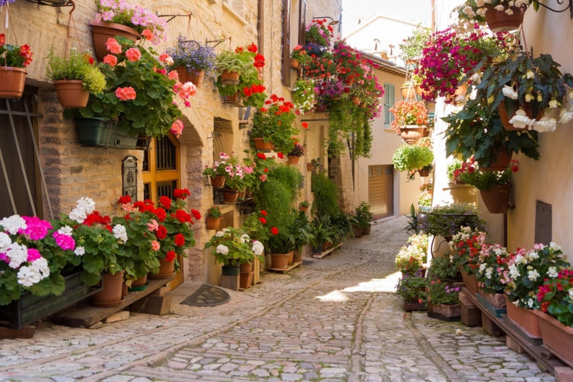 L'ITALIA DEI PAESI