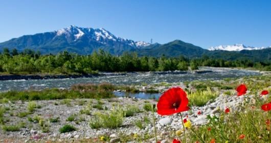 Cuneo: autunno ricco lungo il fiume