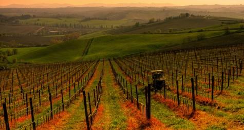 Cicloturismo: la Toscana investe