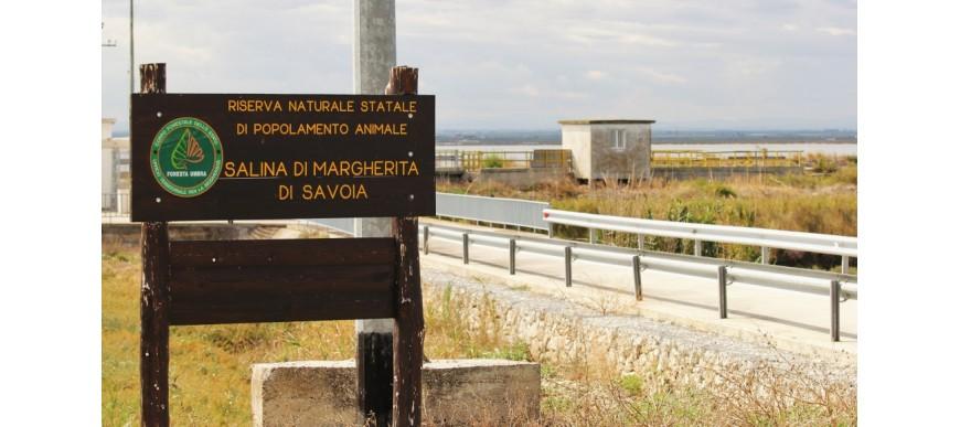 Le Saline di Margerita di Savoia