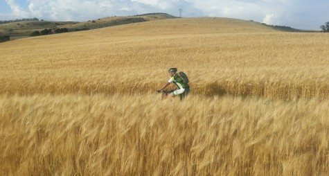 Cicloturismo, l'Italia guida il nuovo trend