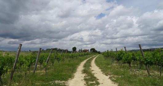 Valorizzare il patrimonio del mondo etrusco: Lazio e Toscana a confronto