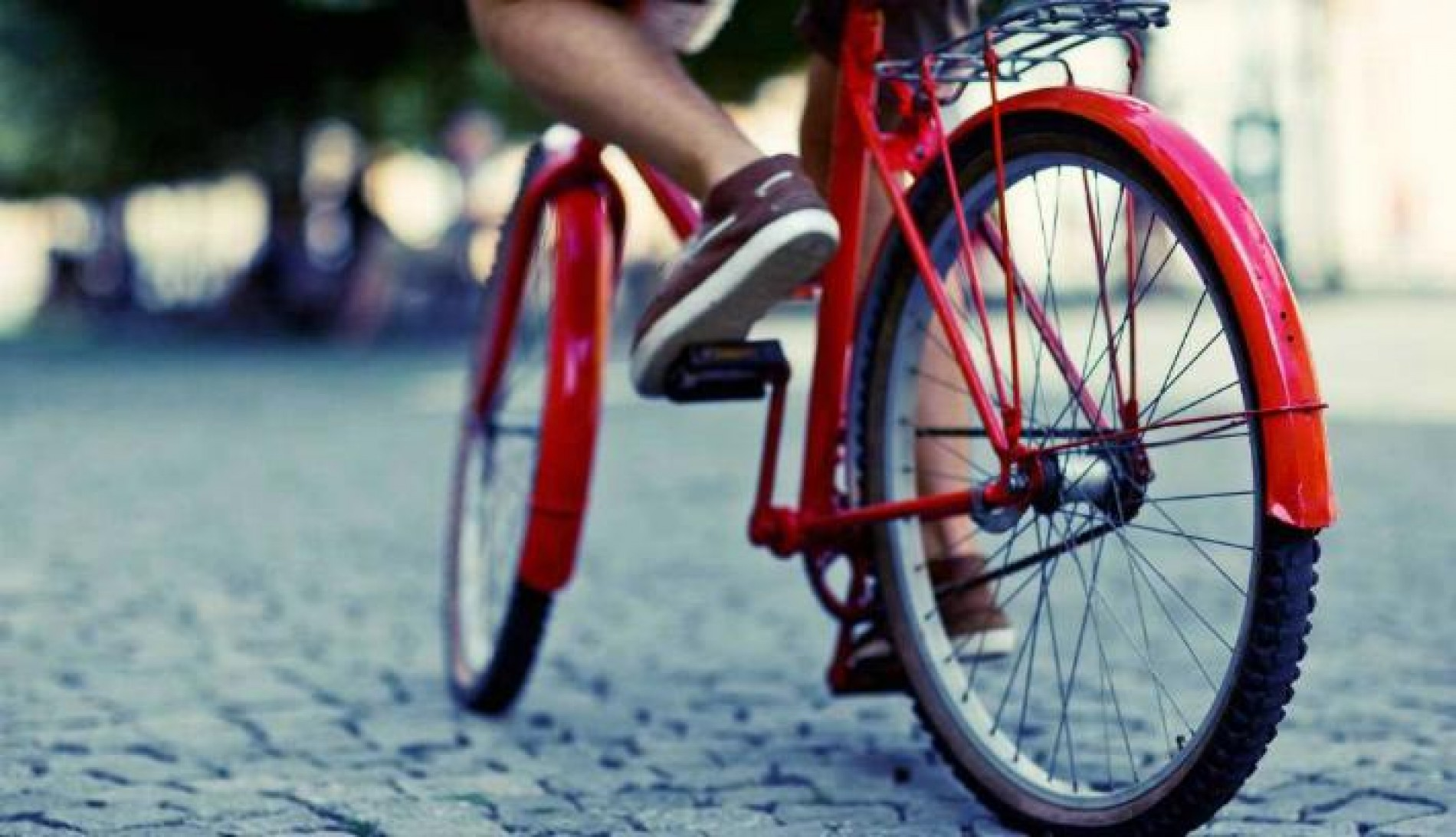 Pedala la bici italiana: record di export in UE